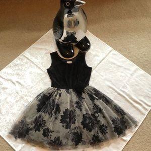 The Children's Place Black Velvet Dress Size 5/6